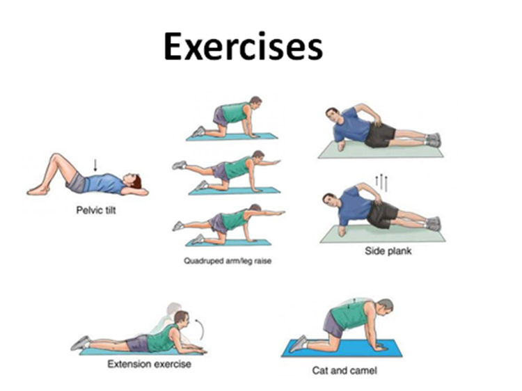 Pics Photos - Chiropractic Back Exercises Home